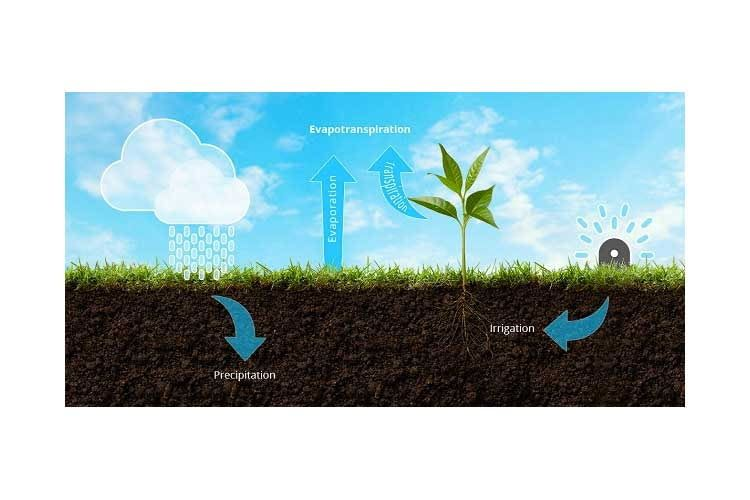 Bild des GreenIQ Smart Garden Hub