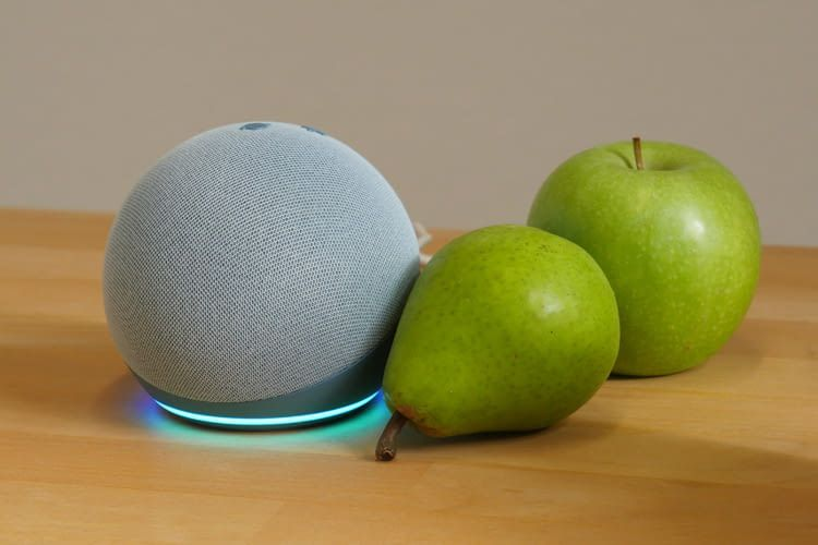 Alle Alexa Lautsprecher (hier Echo Dot 4) lassen sich nach persönlichen Wünschen konfigurieren