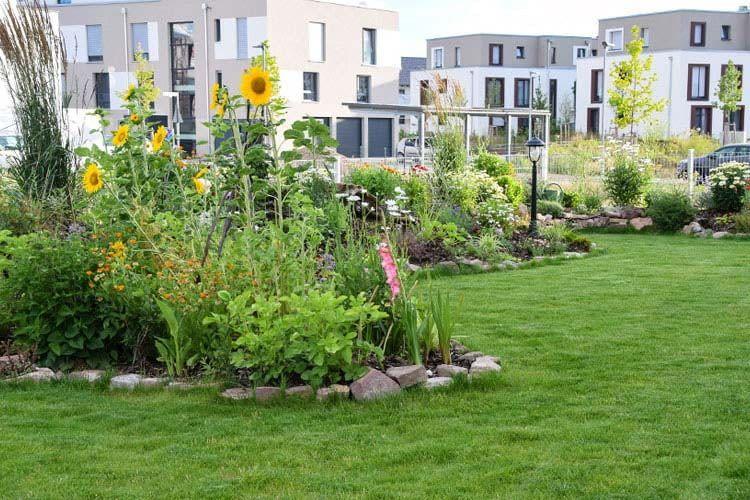 Unsere Expertentipps helfen dabei den Garten auch im Hochsommer grün zu halten