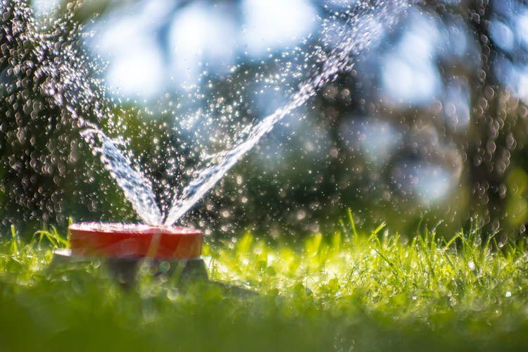 Smarte Beregnungsanlagen berrechnen den Wasserverbrauch besonders effizient