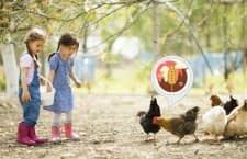 Mit diesem Alexa Skill besuchen Kinder einen virtuellen Bauernhof und lernen nebenbei noch vieles