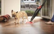 Mit einem Dampfreiniger lässt sich Schmutz schnell und bequem beseitigen
