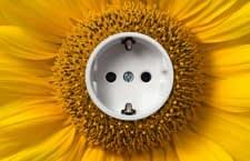 In Deutschland nicht normkonform - der Anschluss einer Solaranlagen an eine Schuko Steckdose